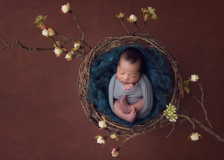 Newborn nest