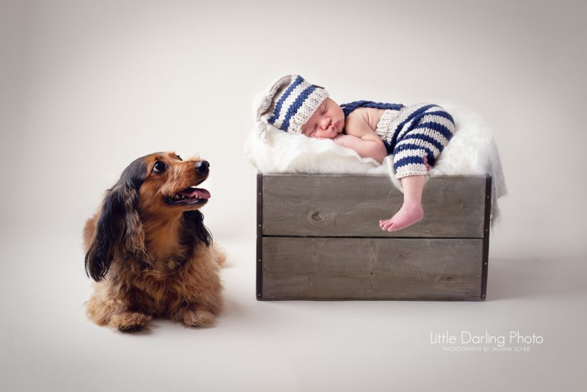 Newborn baby and his dog