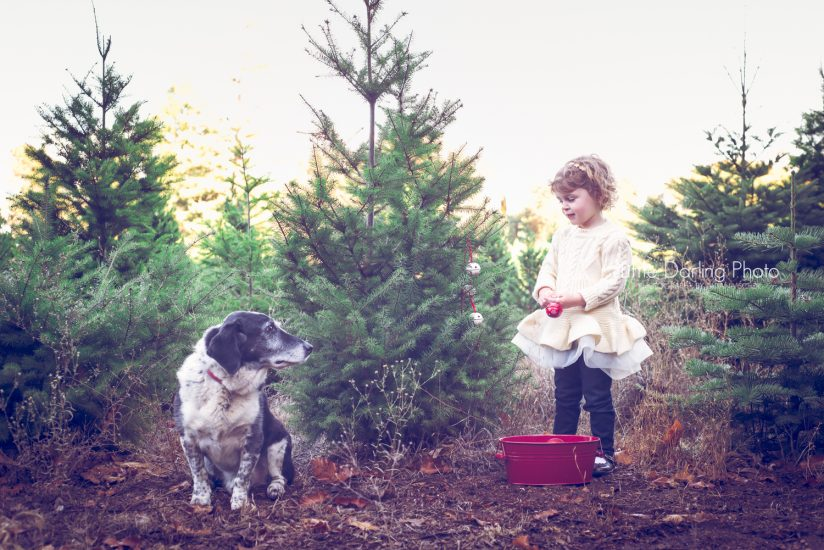 Child photography holidays