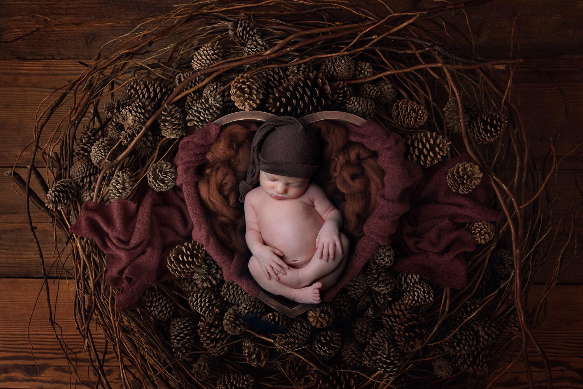 newborn boy Monterey