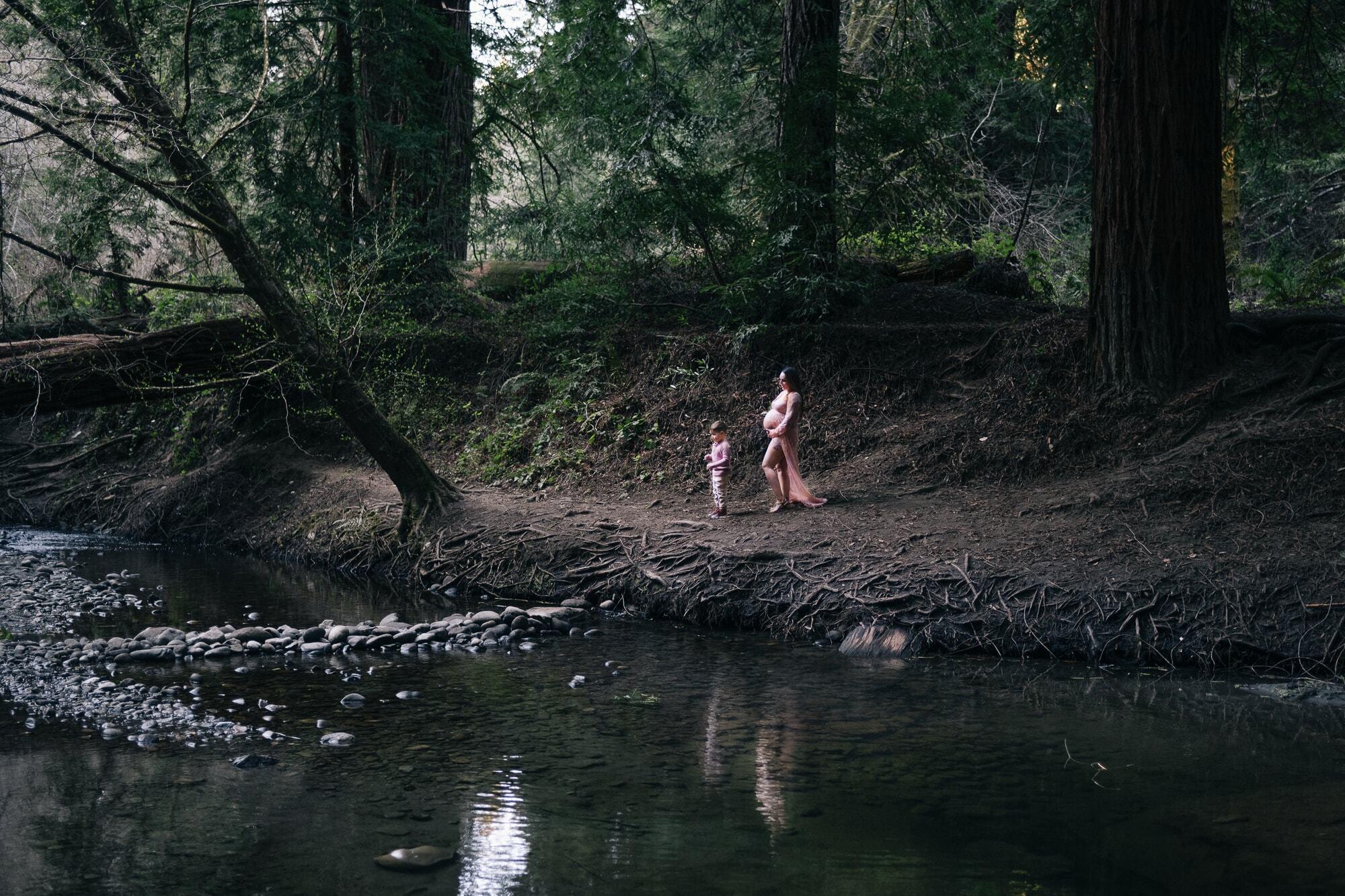 Santa Cruz Mountains maternity photoshoo